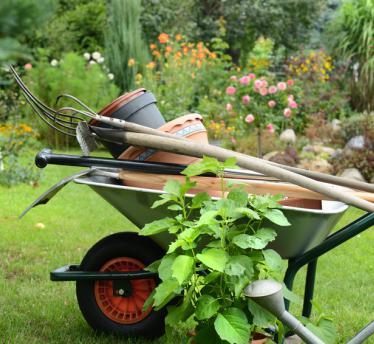 Návrh a realizácia záhrad
