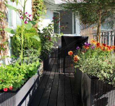 Balkóny a terasy